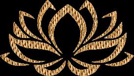 Golden-Lotus-Flower-2-No-Background-300px